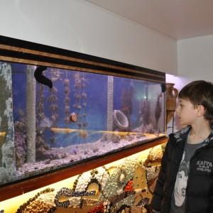 visite chalutier Louis Nocca Sète