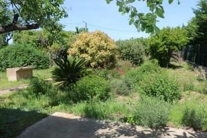 rez de jardin