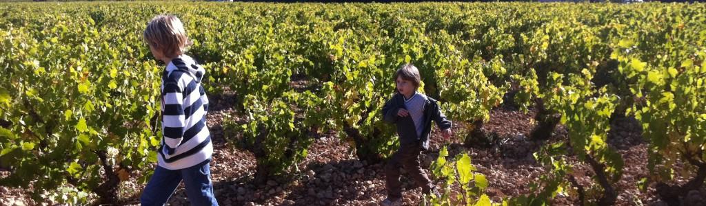 enfants vigne