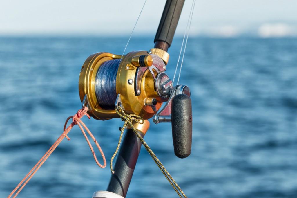 canne à pêche pour la mer